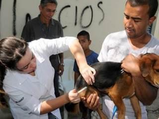 CCZ de Piracicaba (SP) faz Campanha de Vacinação Antirrábica em 28 bairros