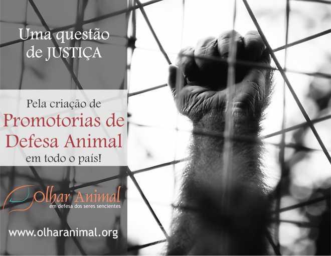 Promotorias de Defesa Animal
