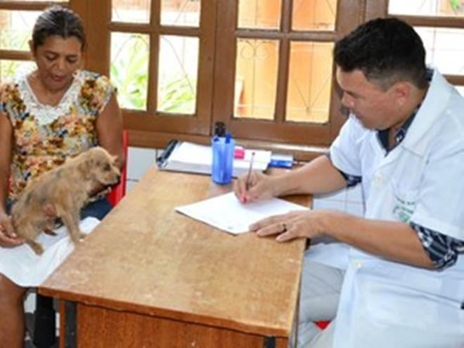 Cães e gatos de Rio Branco (AC) devem usar microchips de identificação