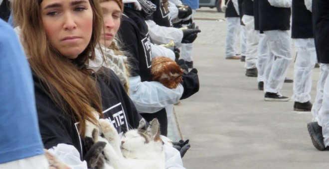 Protestam em Viena com 650 animais mortos contra a exploração animal