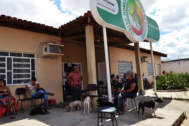 Abandonados, cães e gatos sem zoonoses transmissíveis lotam CCZ em Feira de Santana, BA