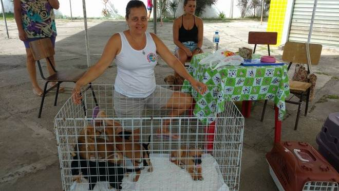 Ilhéus (BA) terá Feira de Adoção de Animais dia 11 de dezembro