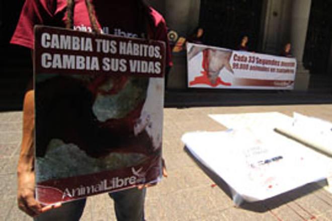 Exigem cardápio vegano em instituições públicas do Chile