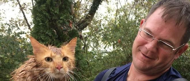 Imagens mostram salvamento de gato preso em valeta durante várias horas