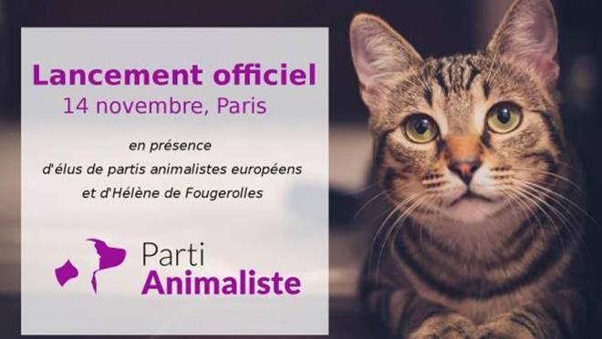 França tem primeiro partido de proteção dos direitos dos animais