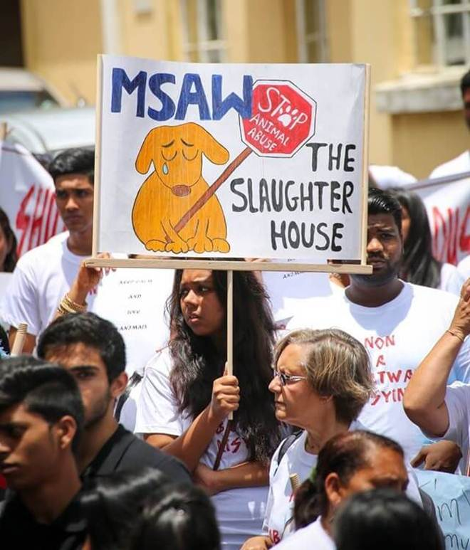 Mauricianos marcham em protesto contra mortes cruéis de cães
