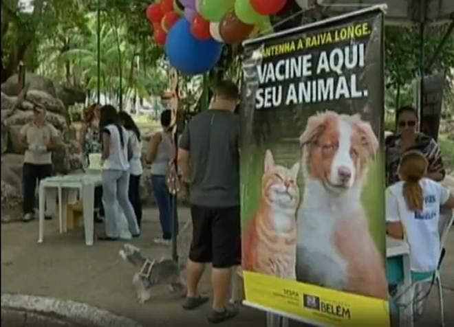 Campanha de vacinação antirrábica lota postos de atendimento em Belém, PA