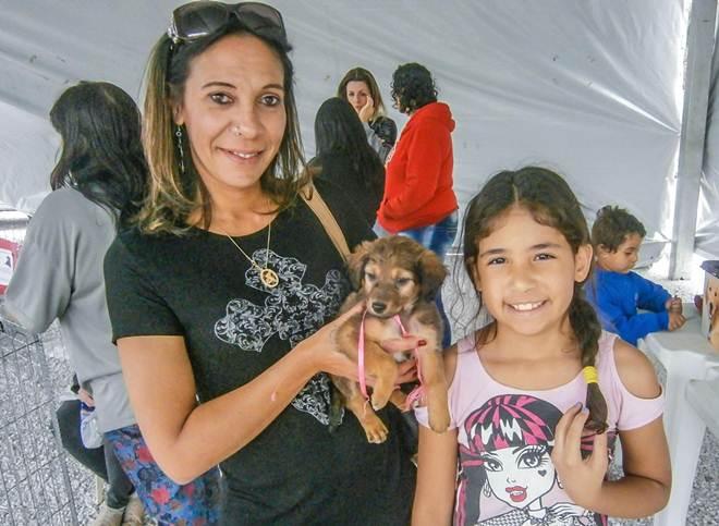 Mais animais são adotados em Pinhais (PR) através da feira de adoção