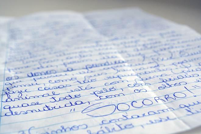 Em carta, leitora denuncia maus-tratos a cadela em Passo Fundo, RS