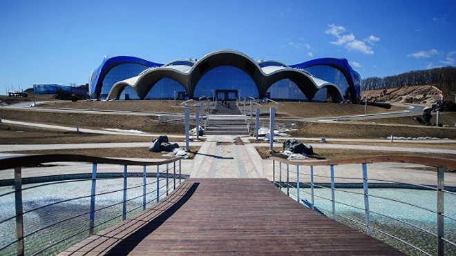 Ativistas dos direitos dos animais propõem reestruturar aquário marítimo de parque aquático russo