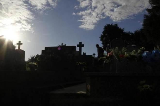 Em Blumenau (SC), projeto autoriza o sepultamento de animais domésticos nos cemitérios