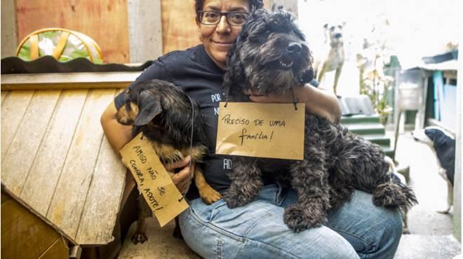 Protetora de Florianópolis (SC) abriga em casa animais doentes e maltratados