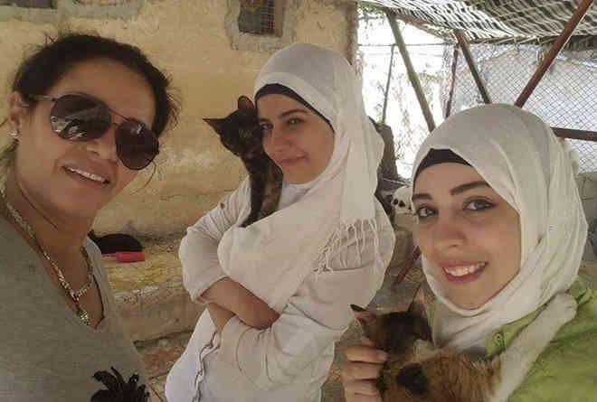 Voluntários resgatam animais abandonados por causa da guerra na Síria