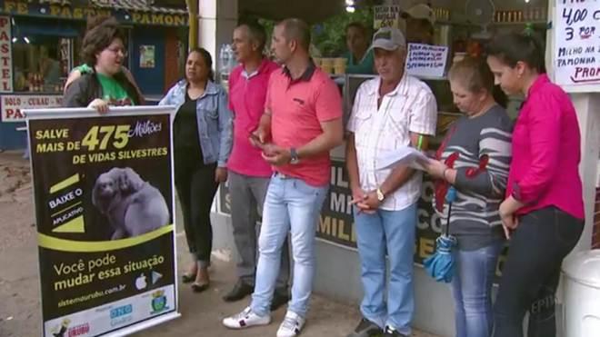 Campanha alerta sobre o risco de atropelamento de animais na estrada em Águas da Prata, SP
