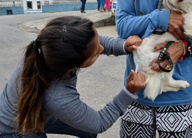 Prefeitura de Mairinque (SP) divulga novos horários da campanha de vacinação Antirrábica em cães e gatos