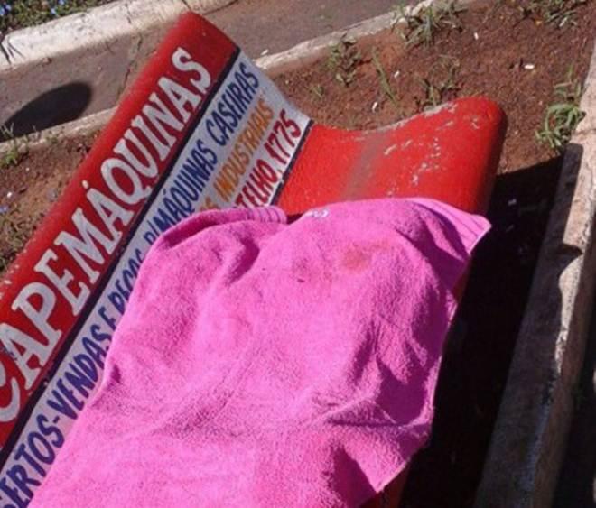 Cadela morre envenenada em Nova Odessa (SP) e tutora acusa vizinho