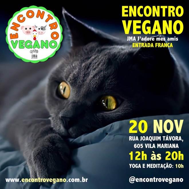 Encontro Vegano celebra a igualdade no Dia da Consciência Negra em São Paulo