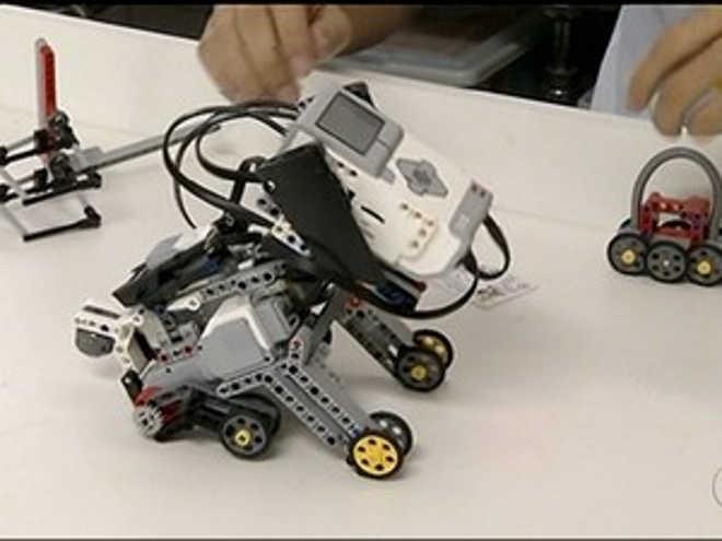Estudantes de Gurupi (TO) criam prótese com blocos de montar para cães amputados