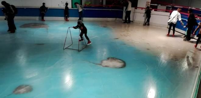 Após críticas, parque japonês fecha pista de patinação sobre 5.000 peixes congelados