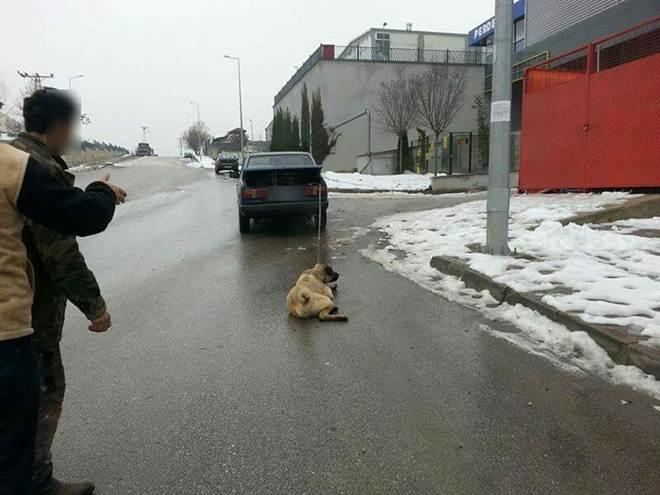 """Monstro cruel é pego arrastando seu cão na traseira de seu carro, a fim de """"alongar seus membros"""""""