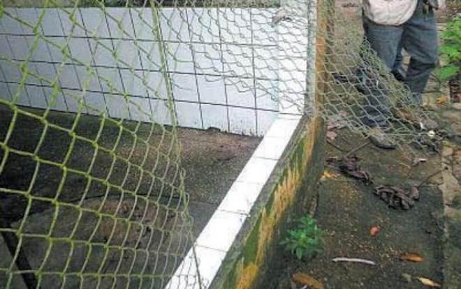 Grupo que sequestrou animais de refúgio ainda não foi identificado em Manaus, AM