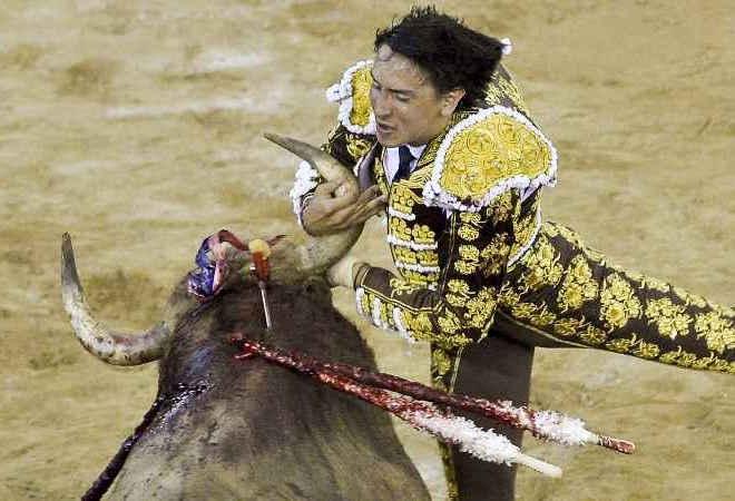 Touros reagem em tourada na Colômbia e três toureiros são atingidos