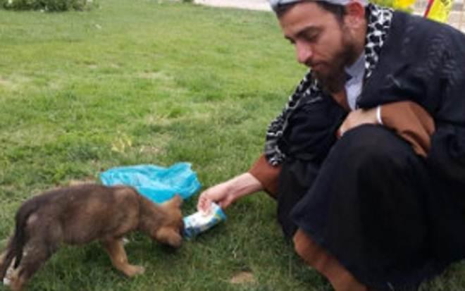 Clérigo iraniano cheio de compaixão dedica seu tempo para ajudar animais abandonados