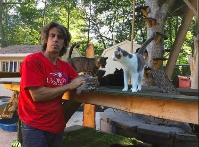 Homem transforma sua residência em santuário para 300 gatos em Nova York, EUA