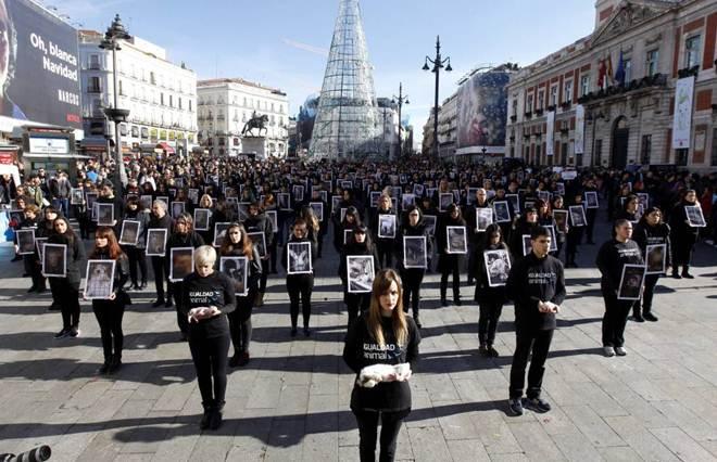 Centenas se reúnem em praça de Madri pelos direitos dos animais