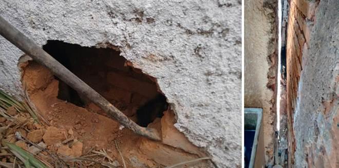 Bombeiros resgatam cão que ficou prensado entre paredes em Alfenas, MG