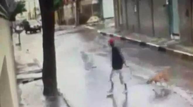 Cachorro é enforcado até a morte em Betim, MG