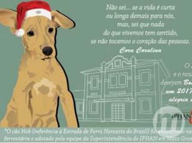 Após ser adotado por colegas de trabalho, cãozinho NOB vira cartão de Natal do Iphan