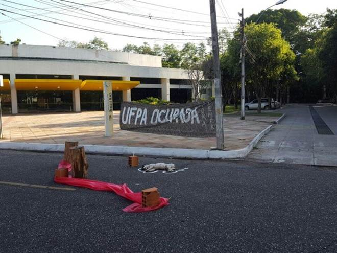 Alunos denunciam atropelamento de animais dentro do campus da UFPA