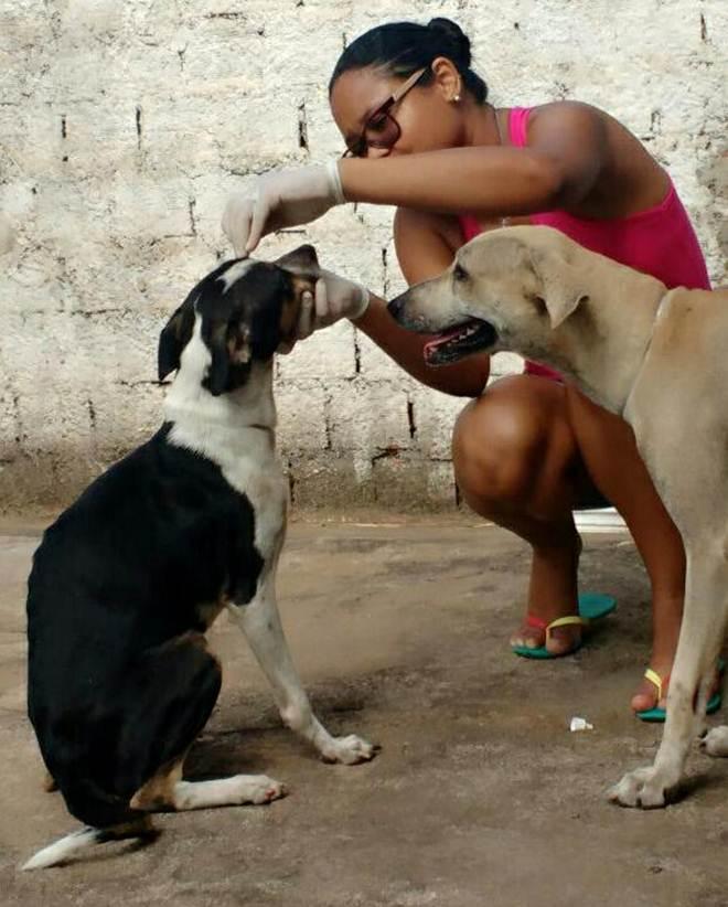 Conheça Os Protetores de Patinhas que resgatam animais abandonados em Teresina, PI