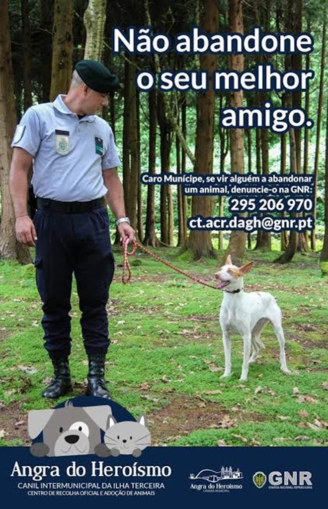 Câmara Municipal de Angra do Heroísmo e GNR promovem Campanha Contra o Abandono de animais