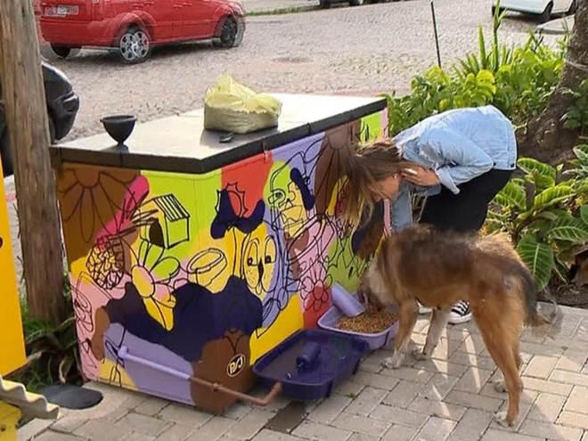 Moradora de Pelotas (RS) cria 'pet food' com ração e água para cães de rua