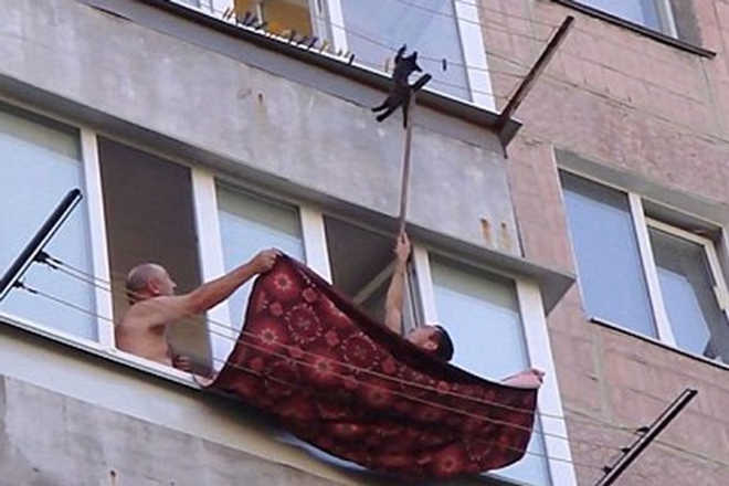 Vídeo angustiante mostra momento em que homens salvam gato pendurado em varal do lado de fora de prédio na Rússia