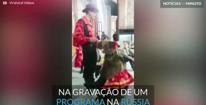 Urso ataca mulher durante gravação de programa na Rússia