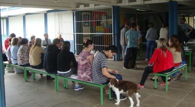 Último mutirão de castração e chipagem do ano será neste fim de semana em Araranguá, SC