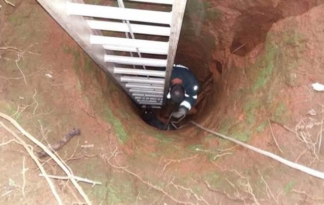 Cão é resgatado dentro de poço em Içara, SC