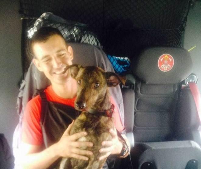 Bombeiros resgatam cachorro de córrego na zona oeste de São José dos Campos, SP
