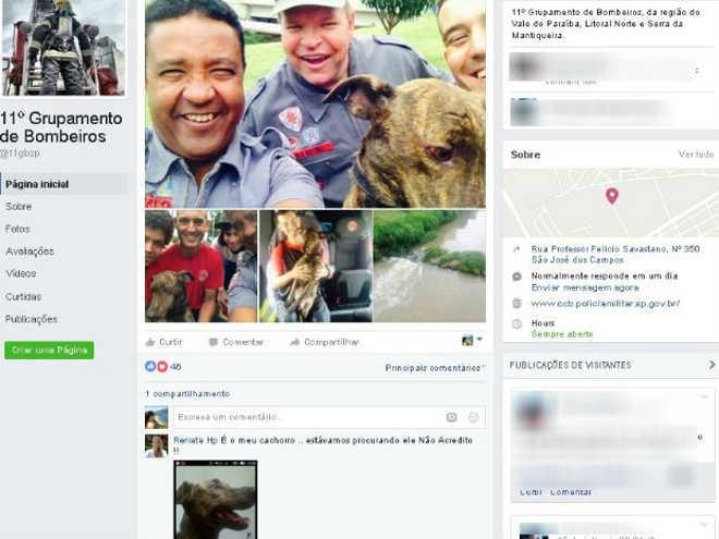 Na web, tutora reencontra cachorro resgatado em córrego por bombeiros