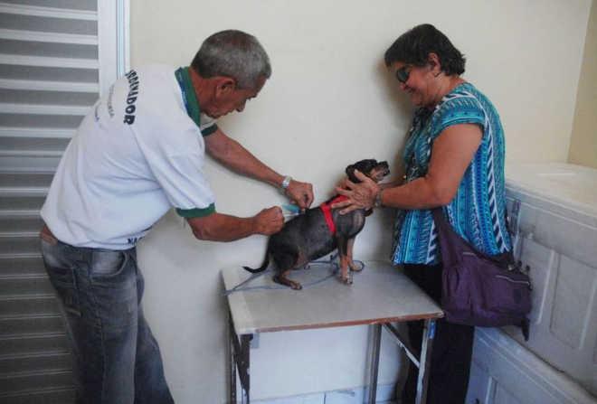 Próxima data para agendar castração de pets em Manaus (AM) será no dia 20 de fevereiro
