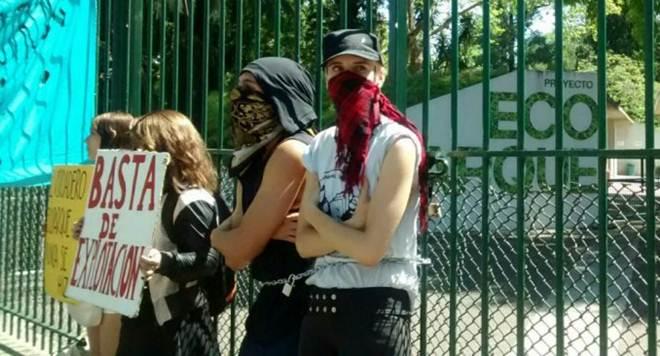 Zoológico de Buenos Aires tem sua entrada bloqueada por ativistas que defensores dos animais