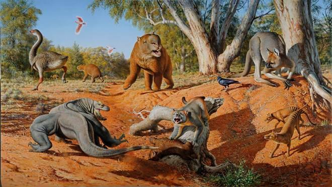 Humanos, e não mudança climática, destruíram a megafauna australiana milhares de anos atrás