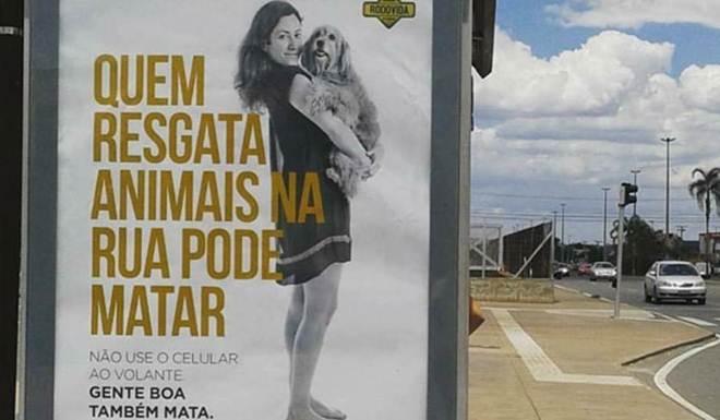 Brasil: Campanha do governo diz que quem resgata animais também mata