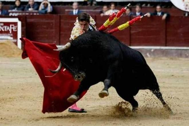 Tribunal Constitucional Colombiano vai estudar ação que pretende reprimir as corridas de touros