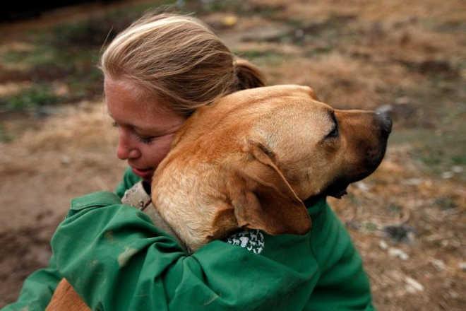 Foto captura o momento que um cão salvo da indústria da carne encontrou alguém que queria ajudá-lo