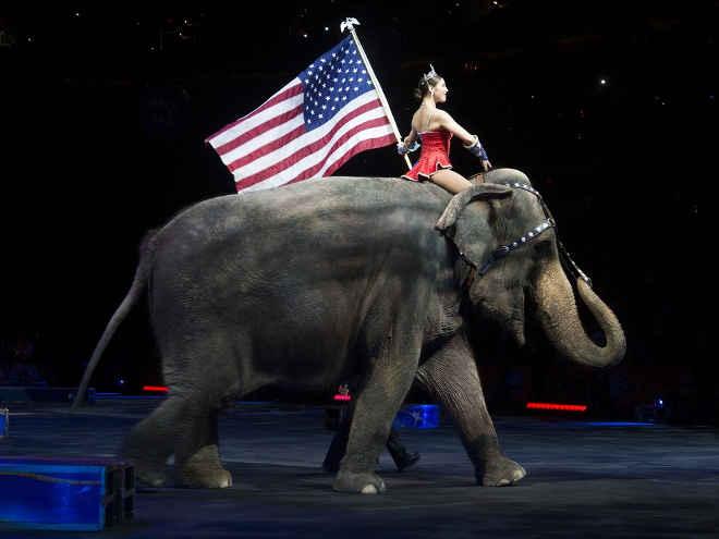 Circo que explora animais há mais de um século fecha as portas nos EUA
