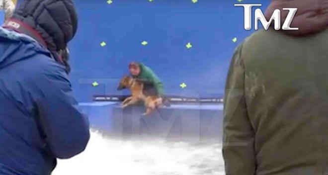 """Vídeo mostra cão sendo maltratado durante gravação de cena do filme """"Quatro Vidas de Um Cachorro"""""""
